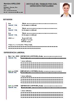 Ejemplo Curriculum Vitae Espanol Curriculos Pinterest