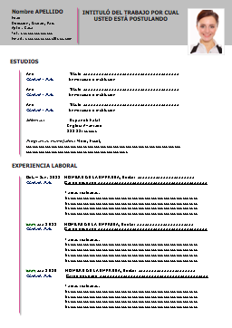 ejemplar de un curriculum vitae  ejemplo-curriculum-vitae-espanol | CURRICULOS | Pinterest | Curriculum