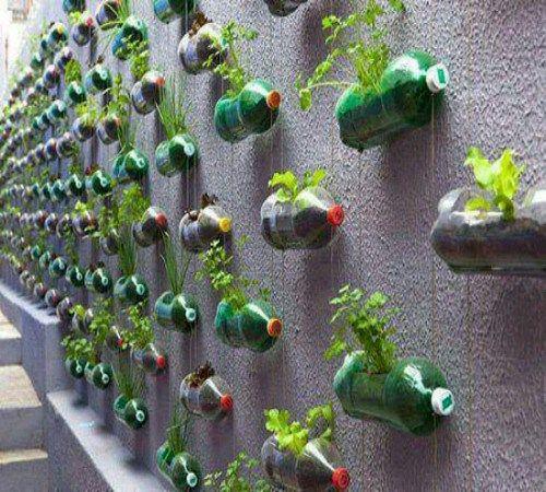 Ide Kreatif Pot Bunga Dari Barang Bekas