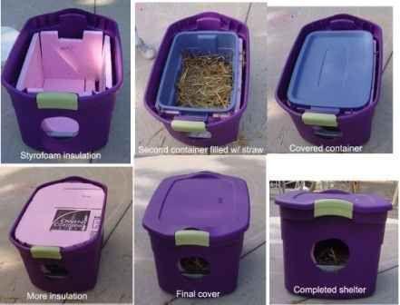 26 Hacks That Will Make Any Cat Owner S Life Easier Gatos Callejeros Gatos Gatos Salvajes