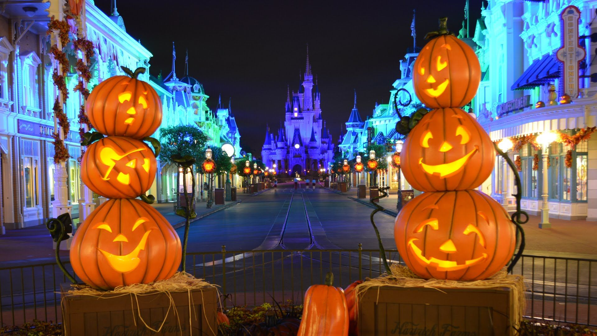 Image result for disney fall decorations | Fall in Love with Disney ...
