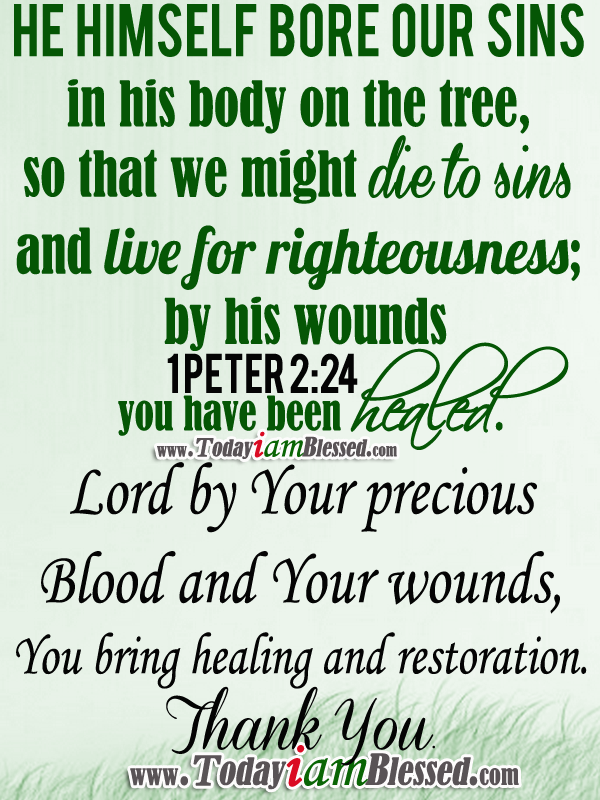 Bible Verses 1 Peter 224 He Himself Bore Our Sins In His