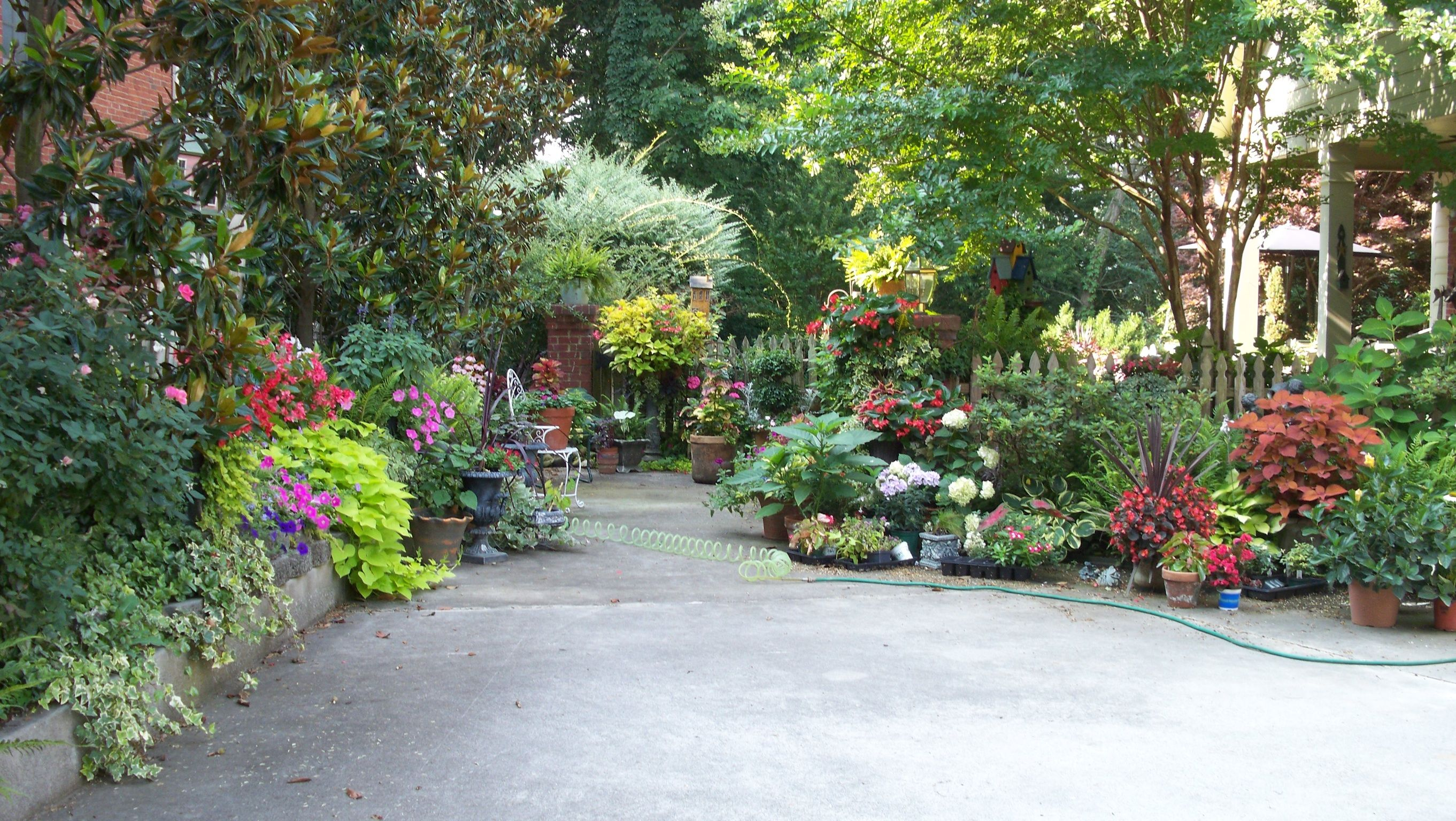 Late Summer At The End Of The Driveway Garden Landscape Design Beautiful Gardens Garden Landscaping