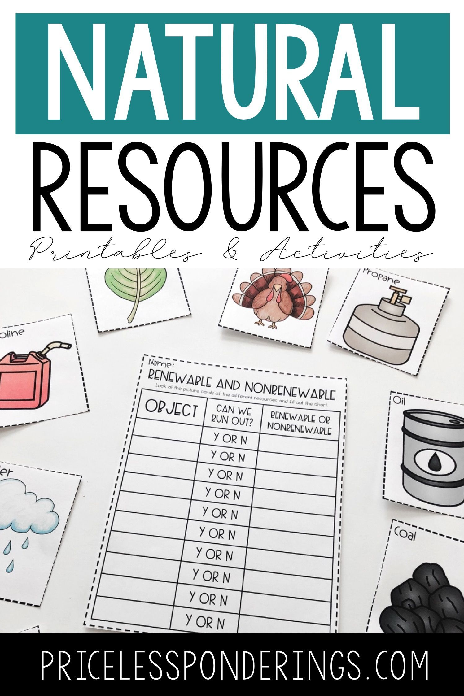 Natural Resources Worksheets and Activities Vocabulary