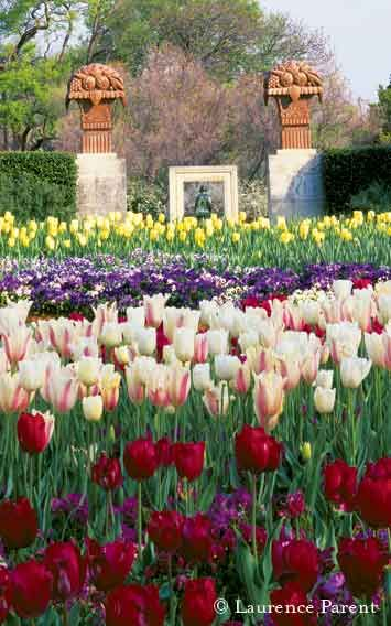 The Dallas Arboretum.- One of my favorite places. And the weather is ...