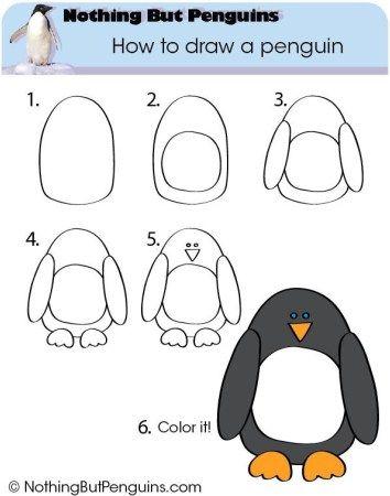 Arts visuels dessiner p le nord comment dessiner les animaux comment dessiner et dessin - Apprendre a dessiner un pingouin ...