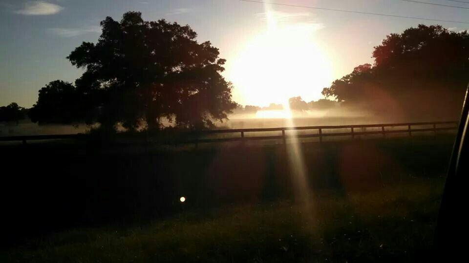 My Citra Florida  Sunrise ; )