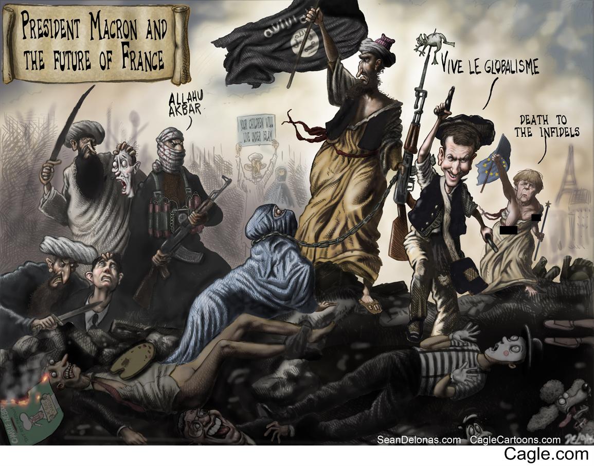 English Version France Macron EU Editorial cartoon