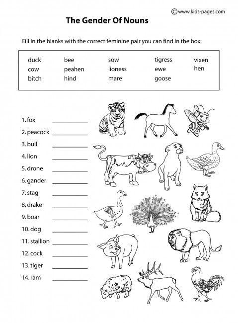 Animals Gender B&W worksheets   grammatica   Pinterest   Worksheets