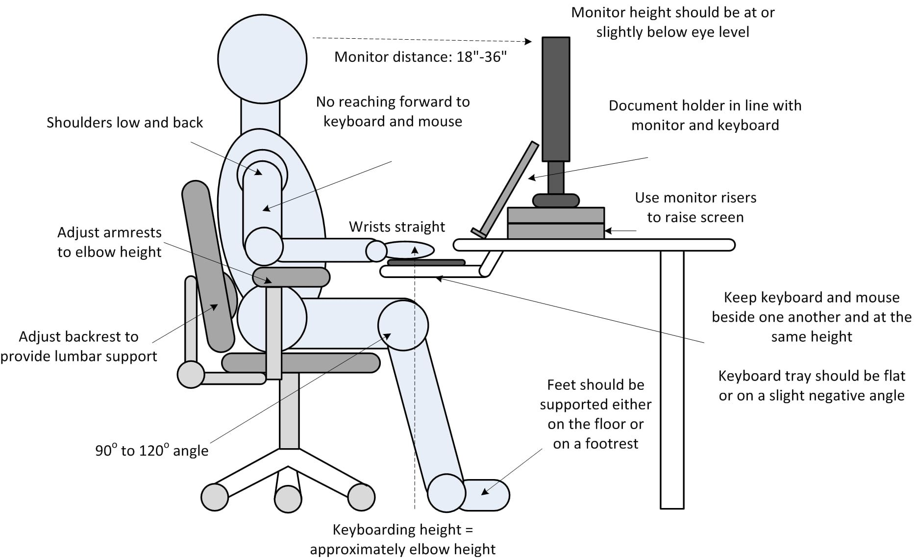 Image Result For Ergonomics Tips For Computer Users