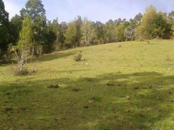 Campo De 5 47 Hectareas Perquenco Ix Araucania Yapo Cl Terrenos