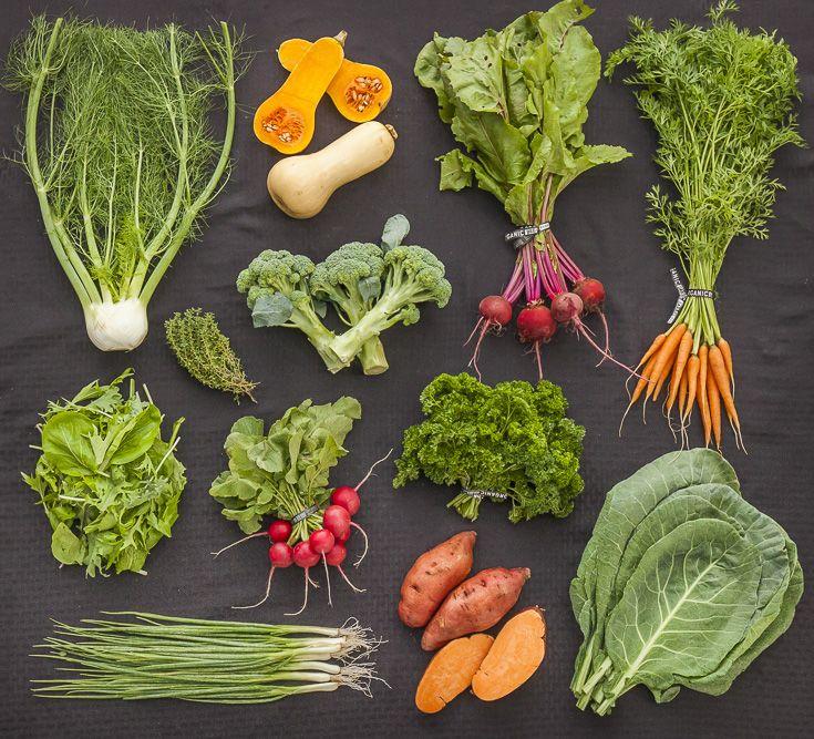 Johnson's Backyard Garden is a certified organic vegetable ...