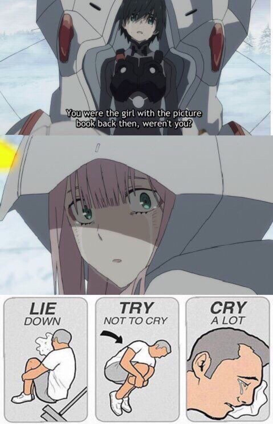 Pin By Cloudy Darkness On Anime Quotes Darling In The
