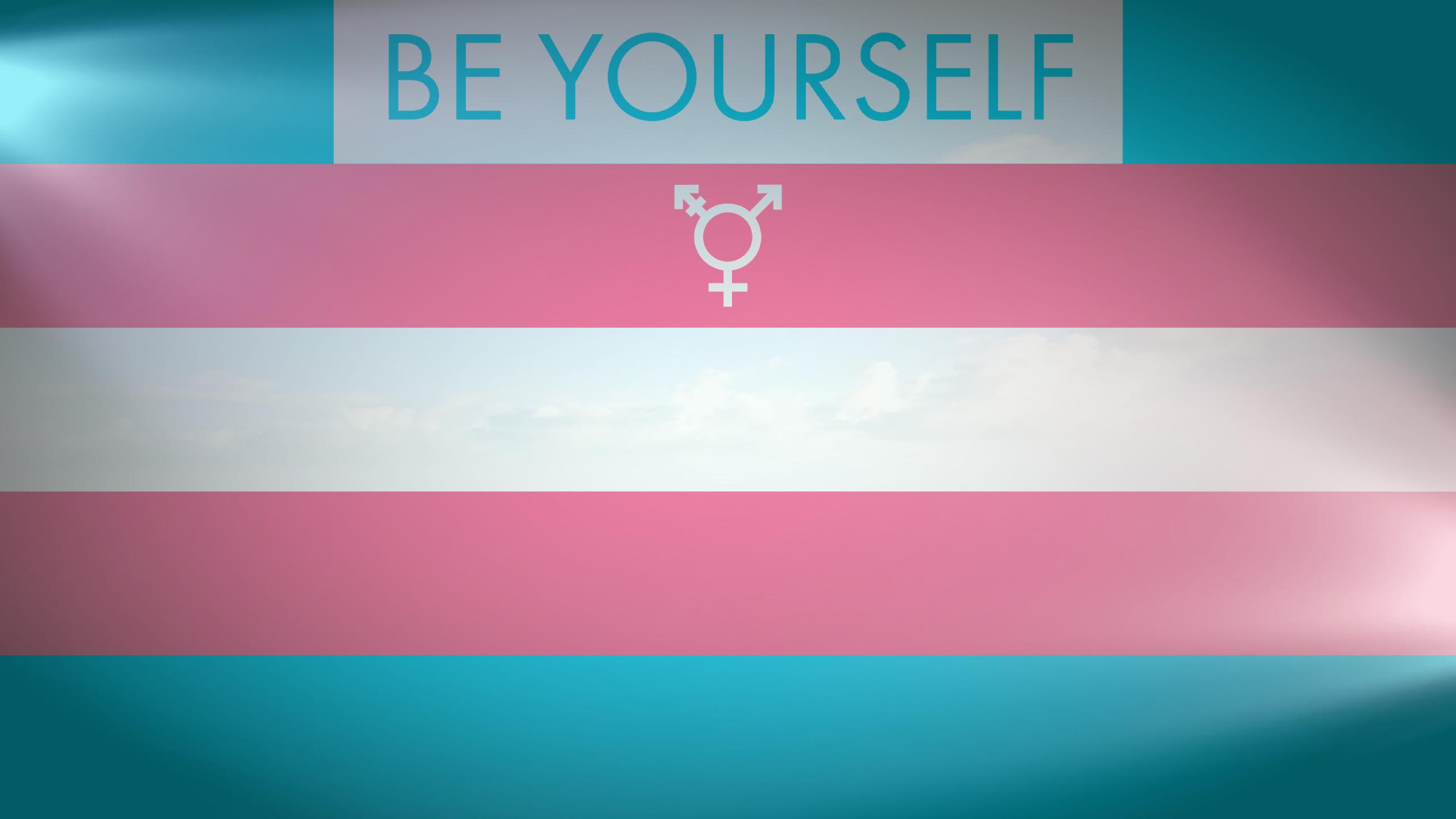 2560x1440 Trans Pride Trans Pride R Wallpaper Desktop Background Images