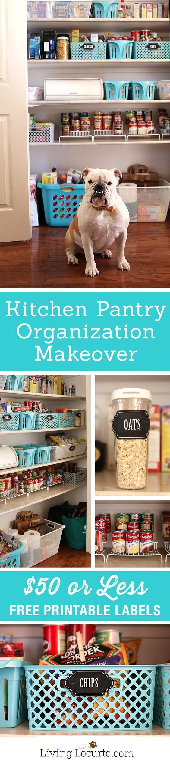 Makeover your kitchen pantry with $50 or less! Inspiring kitchen ...
