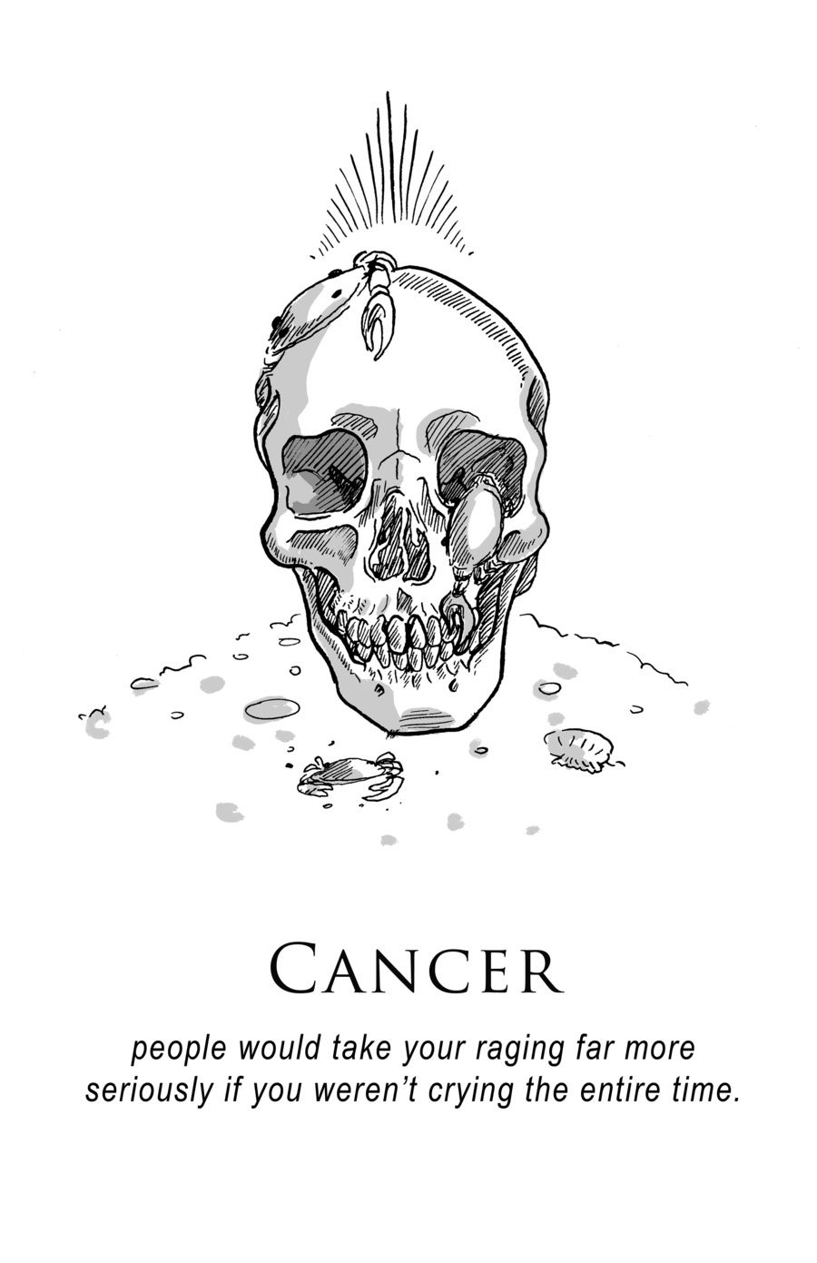 Zodiac Signs SR | Portfolio