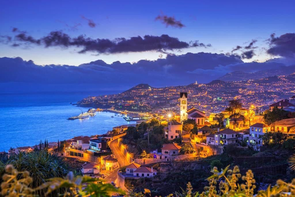 Christmas with Fred Olsen in Madeira in 2020 | Whale watching trip, Trip, Madeira