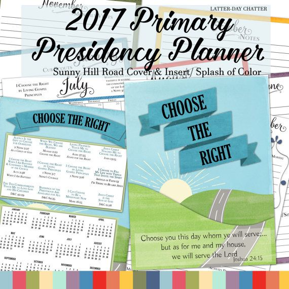 2017 Splash of Color Presidency Planner {Sunny Hill Road Cover} | De ...