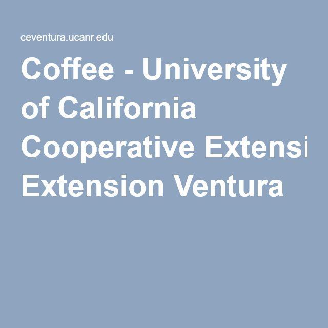 Coffee - University of California Cooperative Extension Ventura