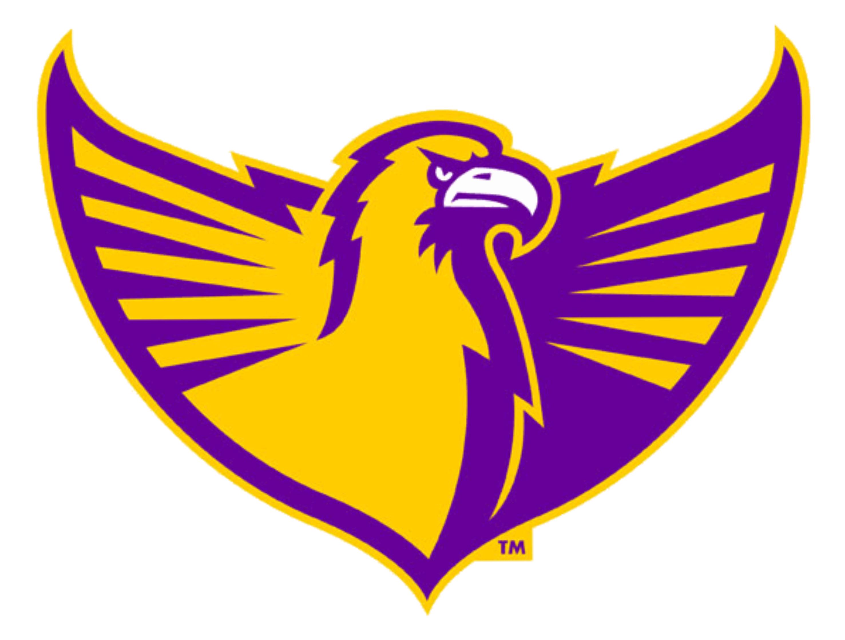 Tennessee Tech Golden Eagles Vector logo, Eagles