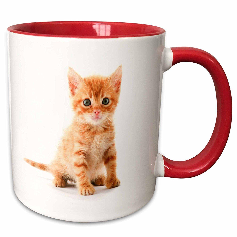 3drose Florene Cat Cute Orange Tabby Kitten 11oz Two Tone Red Mug Mug 44771 5 To View Further Visi Tabby Kitten Orange Orange Tabby Cats Tabby Kitten
