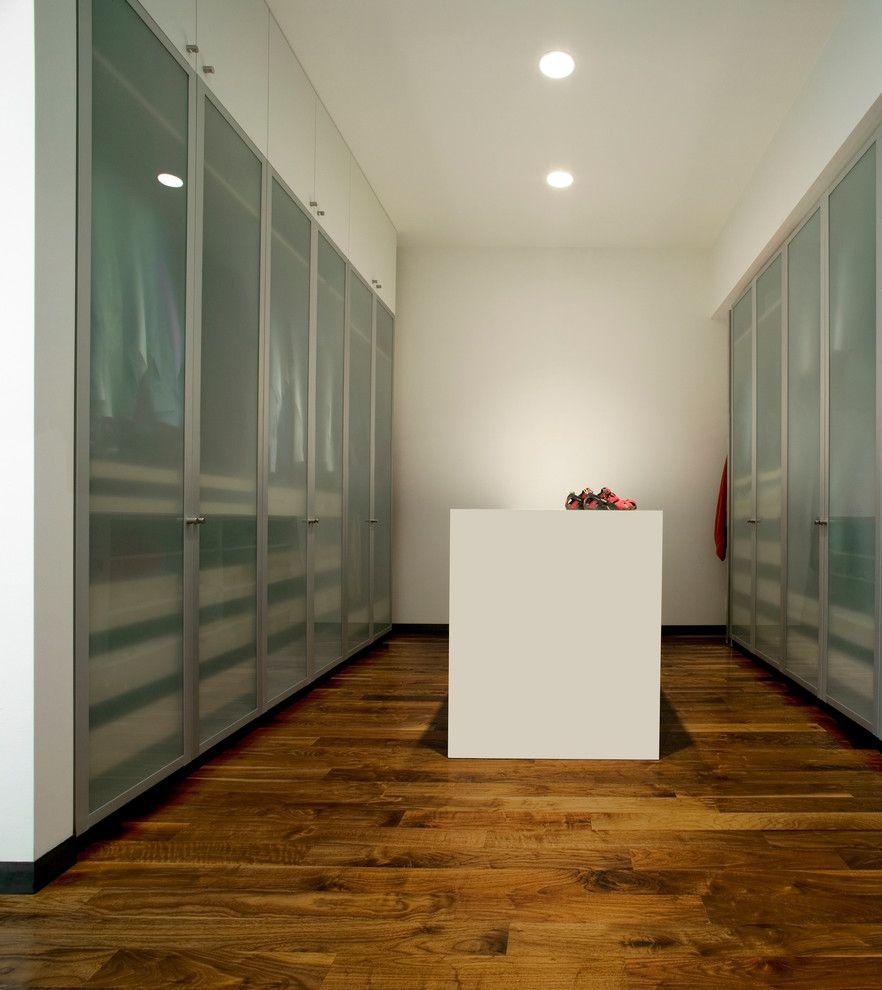 Modern Closet Closets Pinterest Glass Closet Doors Closet