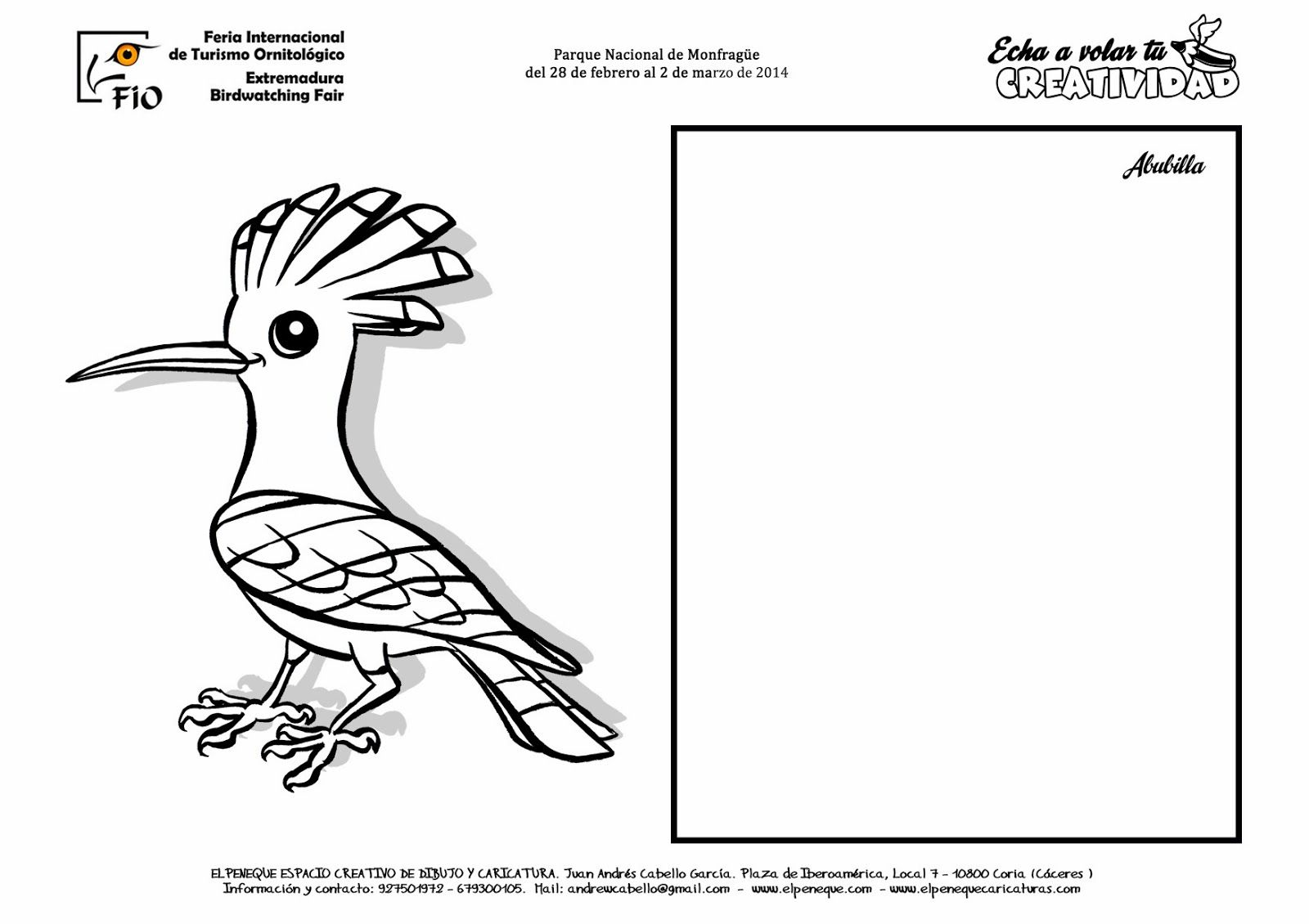 FICHAS DE AVES PARA DIBUJAR Y COLOREAR EN FIO   Abubilla   aves en ...