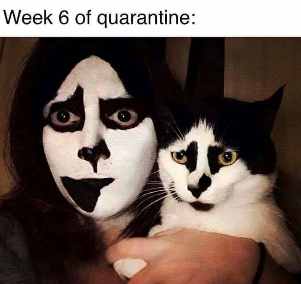 Pin On Quarantine