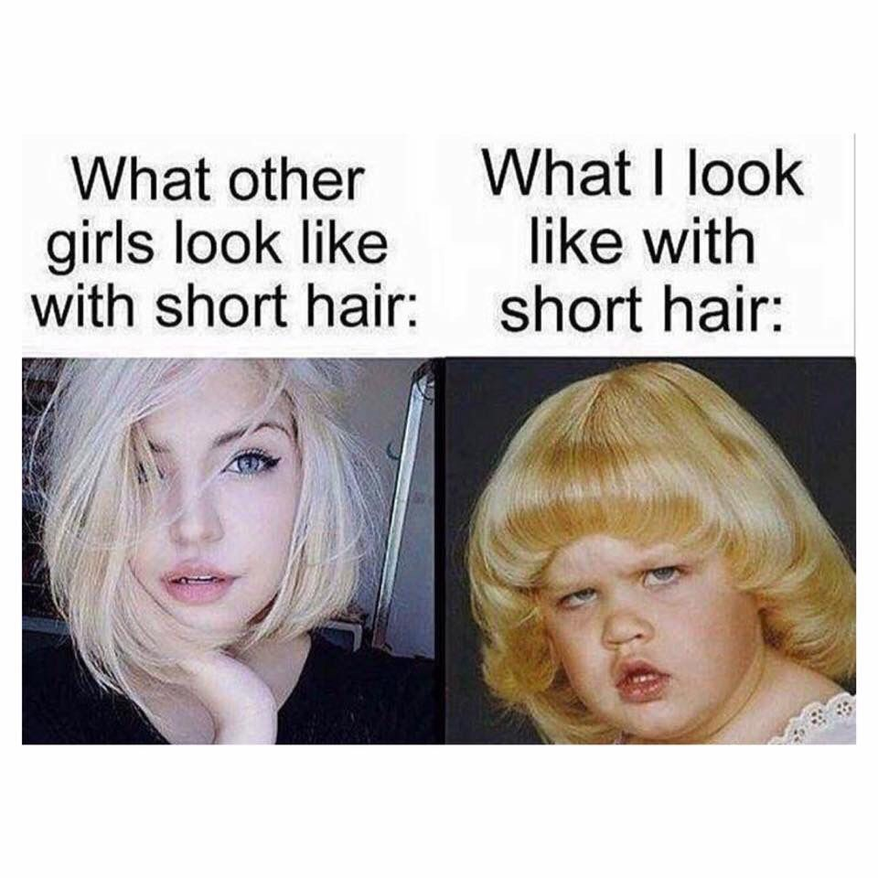 Pin By Skyler Duplessis On Funny Bone Hair Meme Hair Humor Short Hair Styles