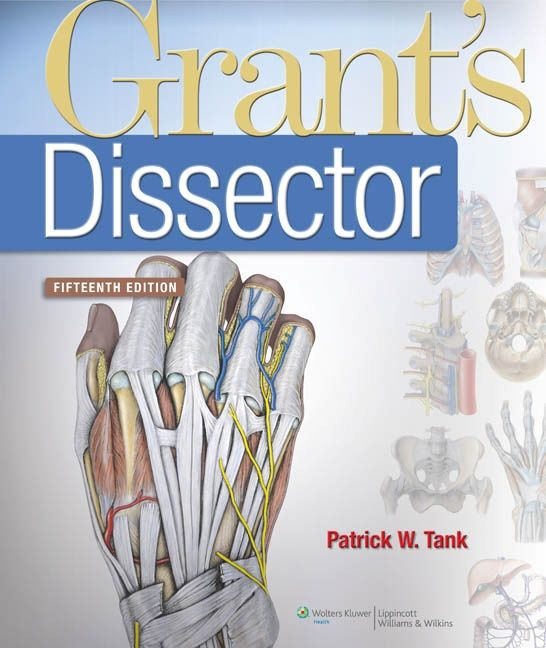 Grant\'s Dissector 15th Edition pdf | PA school | Pinterest | Pdf and ...