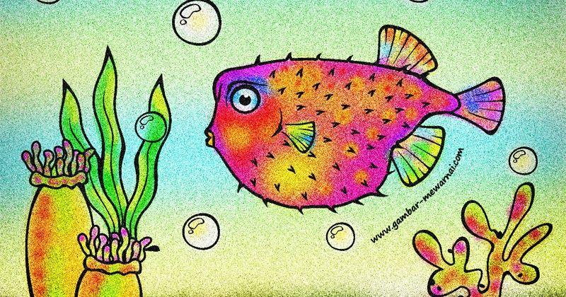Contoh Mewarnai Ikan Buntal Wwwgambar Mewarnaicom Gambar