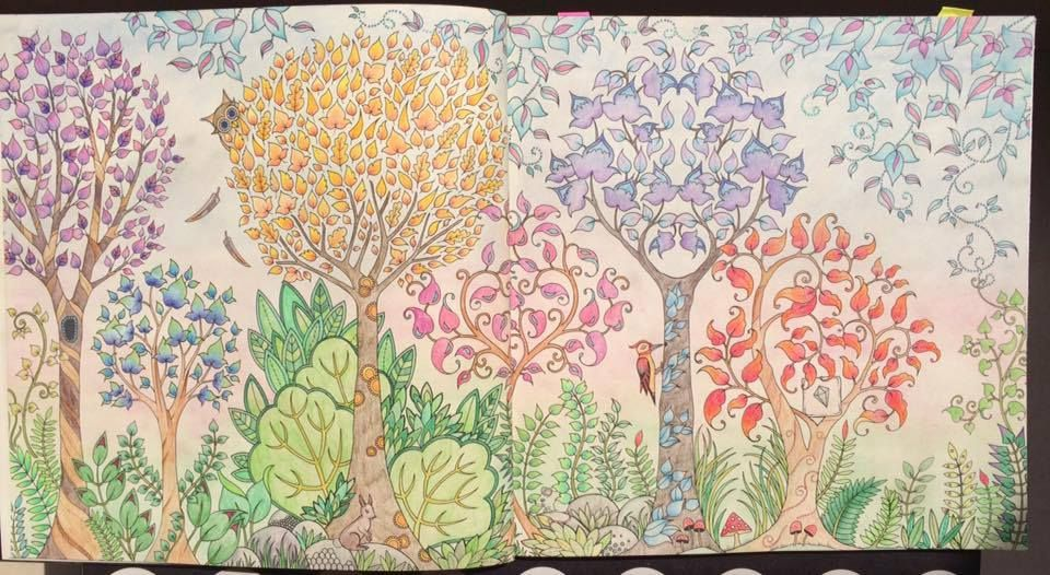 Step By Colouring This Image With Lizzie From Enchanted Forest