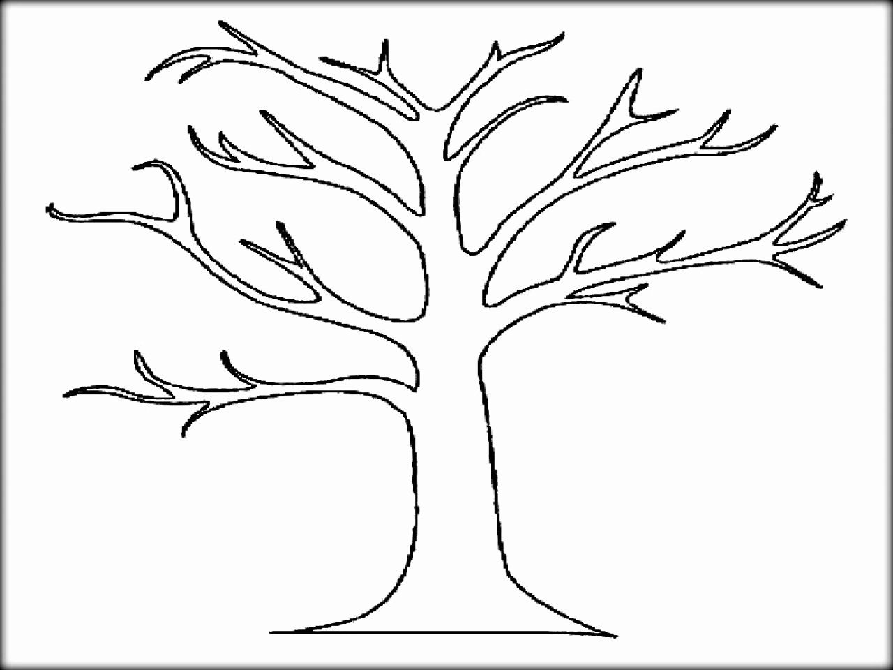 Fall Tree Coloring Page Awesome Autumn Trees Drawing at