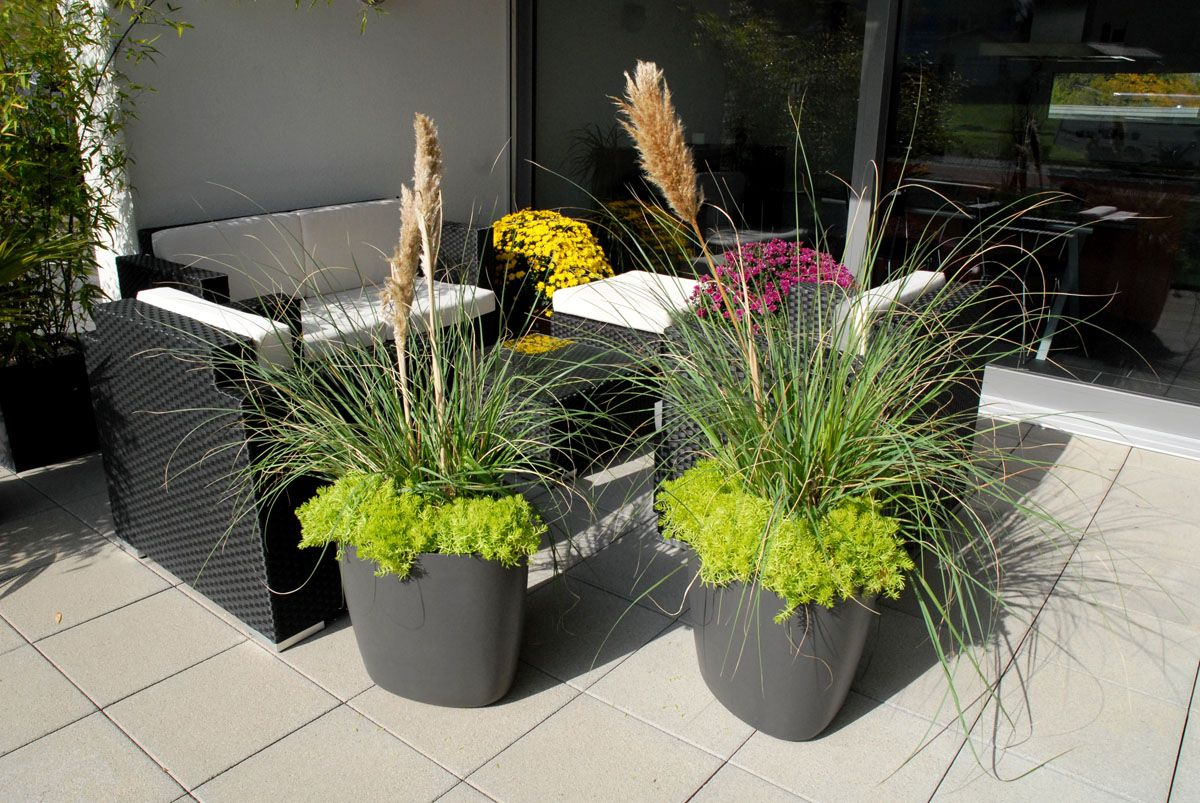 Residential planter design with bulbs google search these things residential planter design with bulbs google search modern plantersconcrete plantersoutdoor workwithnaturefo