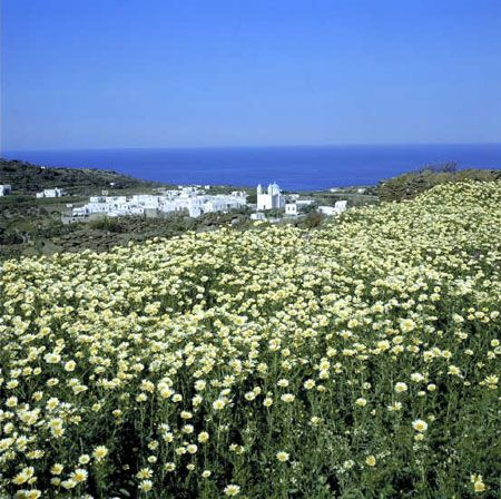 Island of Sifnos, Cyclades