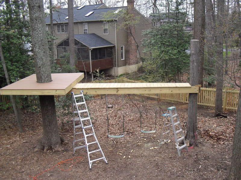 Do It Yourself Home Design: Tree Platform W Bridge Swings Underneath ... Probably Can
