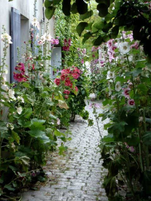 Photo of schöner alter gemauerter Gartenweg entlang fabelhafter Bepflanzungen und blauen…