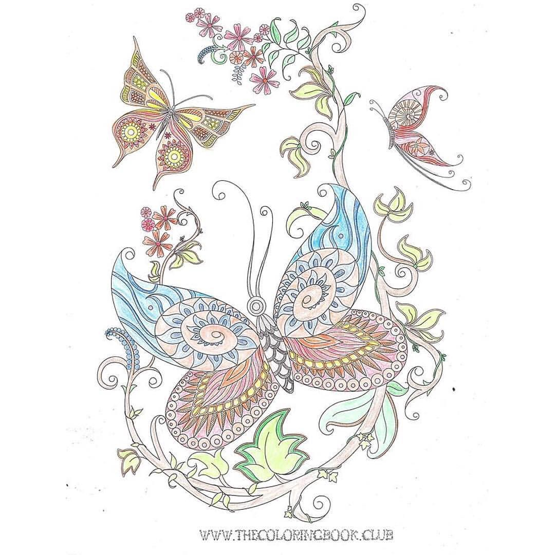 Butterfly coloring page free download. | Butterfly ...
