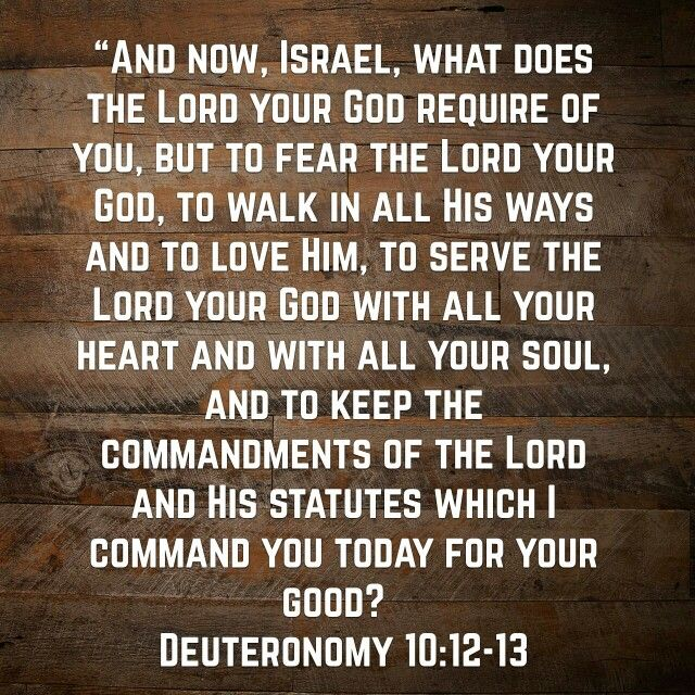 Pin by Aletia Thompson on God's Word | Strength bible quotes