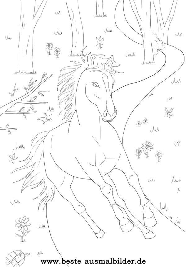 Ausmalbilder Ostwind: Ausmalbild Pferd Wald