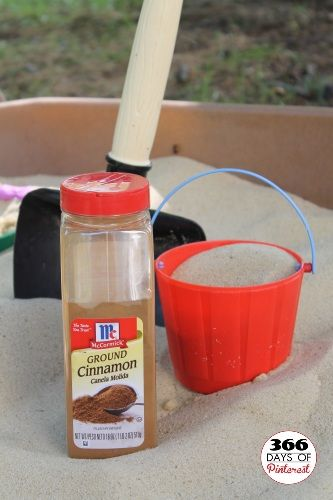Cinnamon in the Sandbox - It keeps the bugs away! I knew cinnamon repelled ants... but I never thought of this!