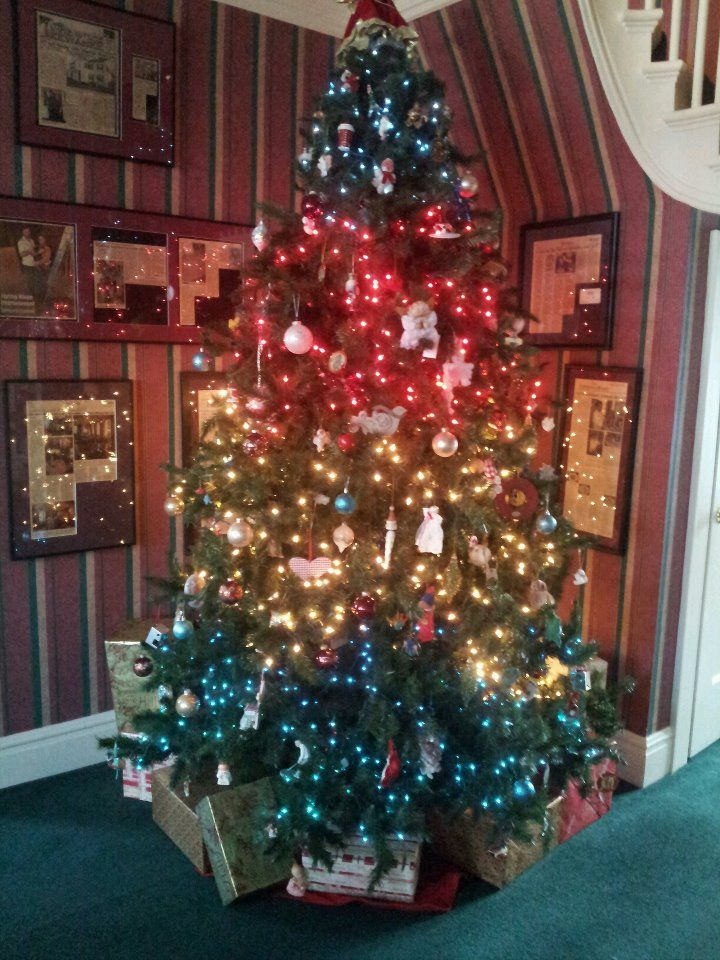 All American Christmas Tree at Chestnut Street Inn - All American Christmas Tree At Chestnut Street Inn Festively