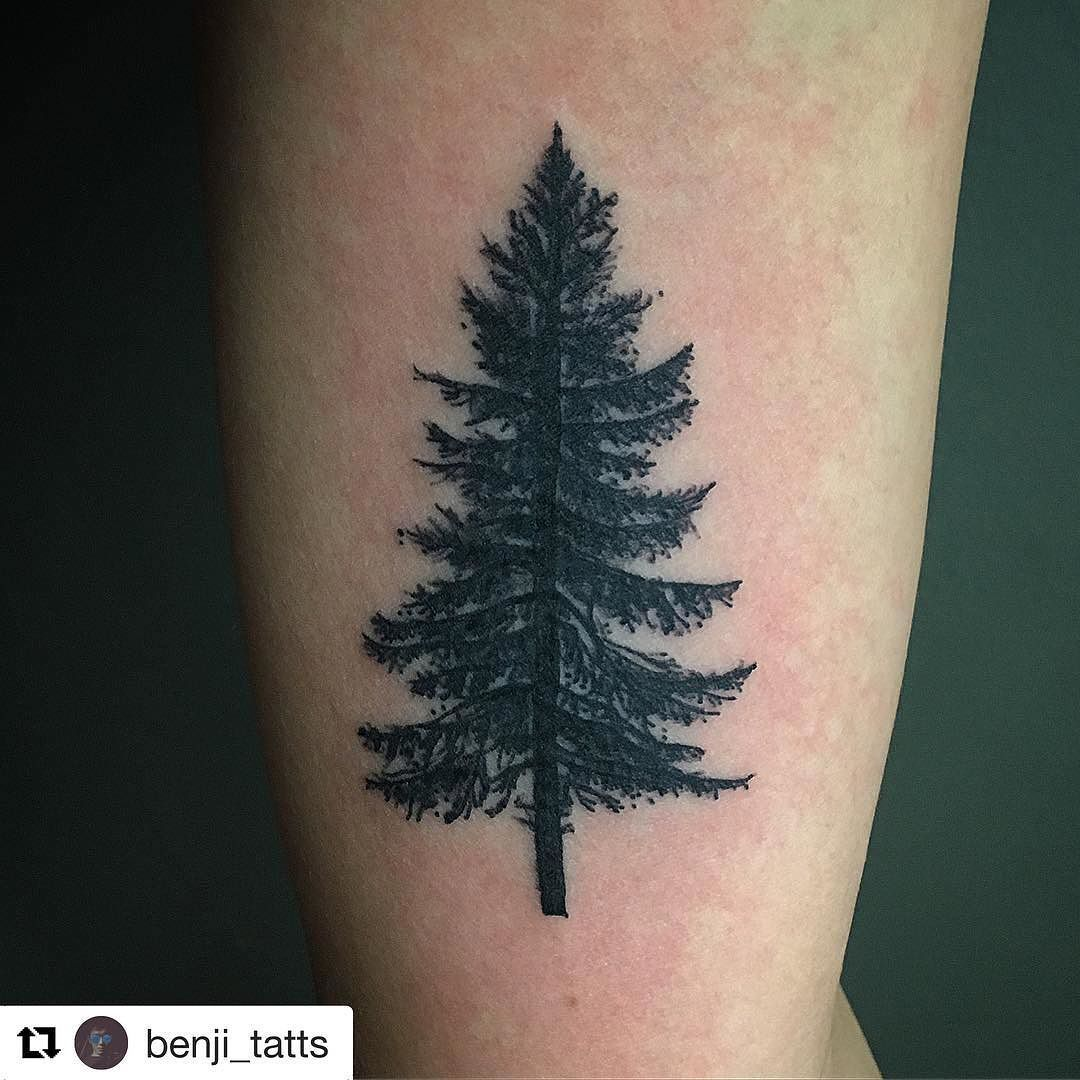 Pinterest: madysentrout | Tattooed | Tree tattoo back ...