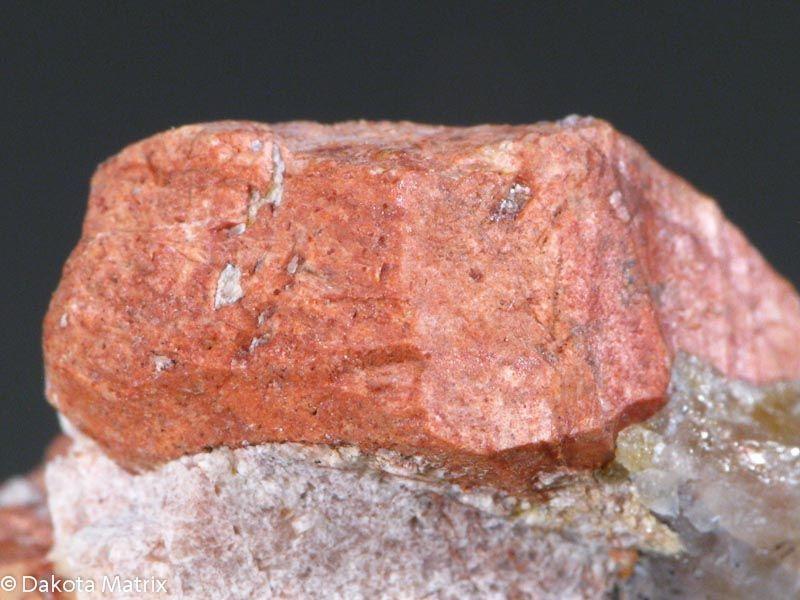 Fluocerite-(Ce), (Ce,La)F3, Little Patsy pegmatite, Jefferson Co., Colorado, USA. Dimensions 30 x 20 x 15 mm. Photo DakotaMatrix