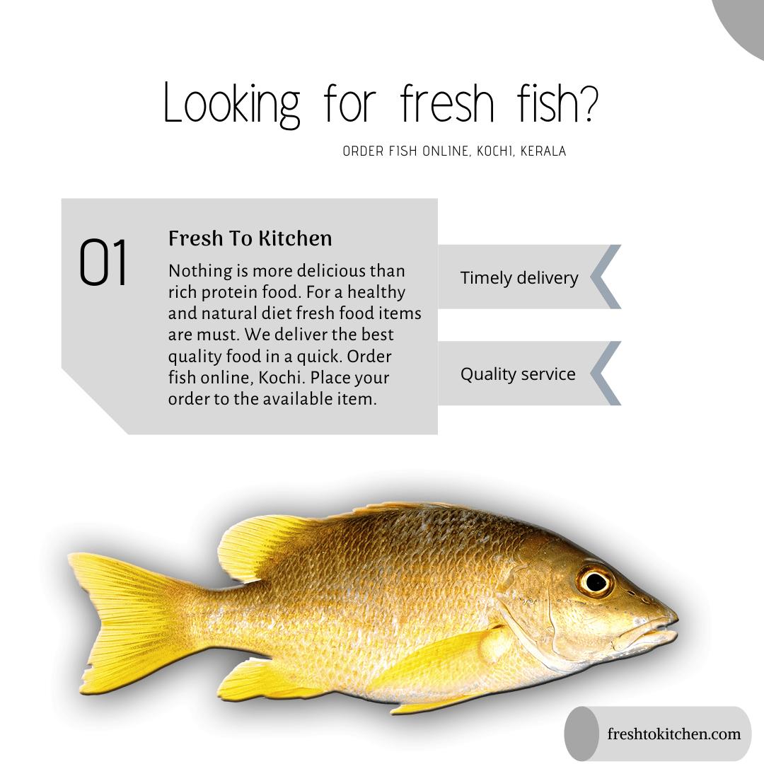 Order Fresh Fish Online In Kochi Best Online Service Kerala Fish Fresh Fish Food Quality