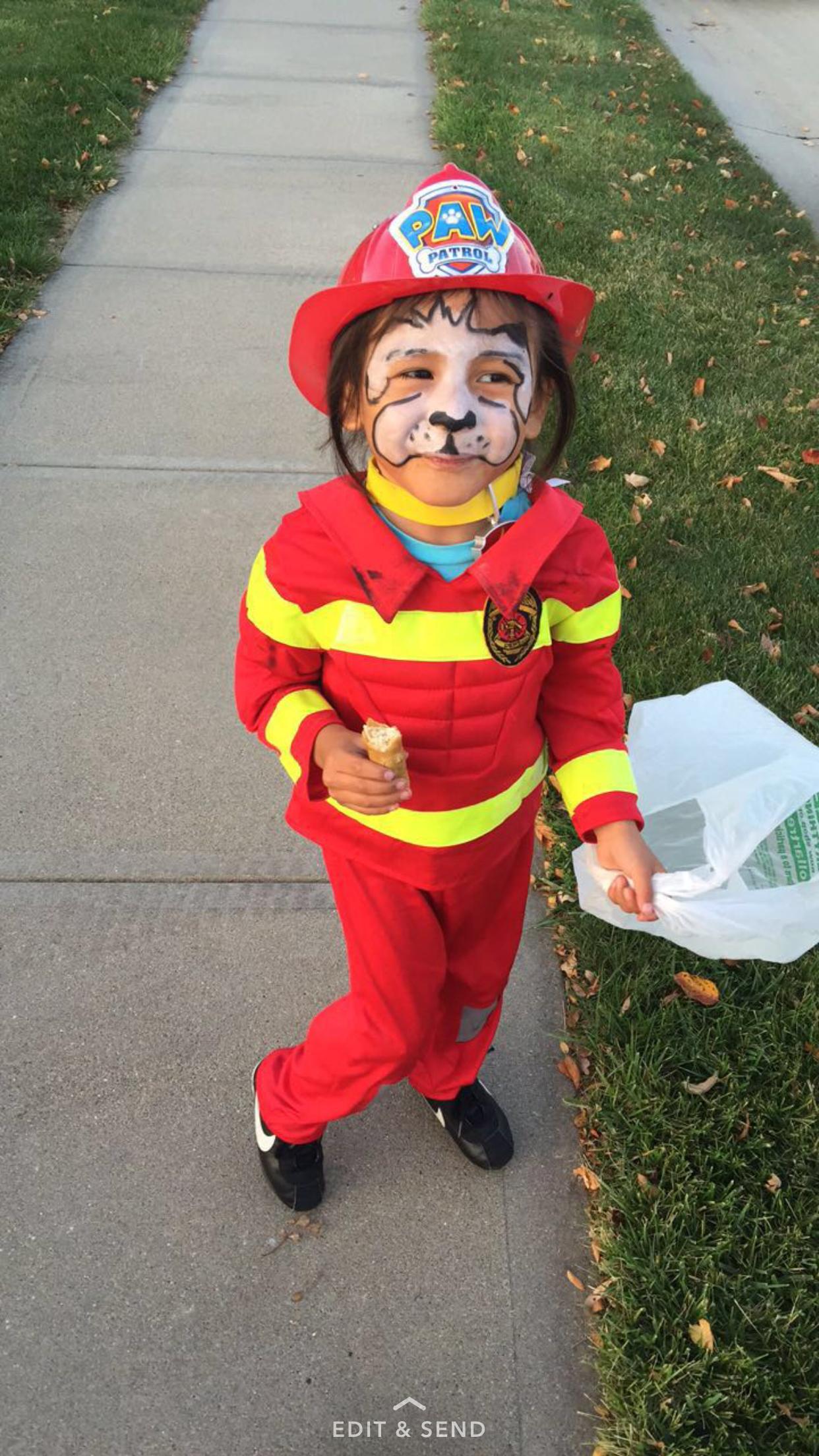Marshall Halloween costume Firefighter costume at Kmart $9 ...
