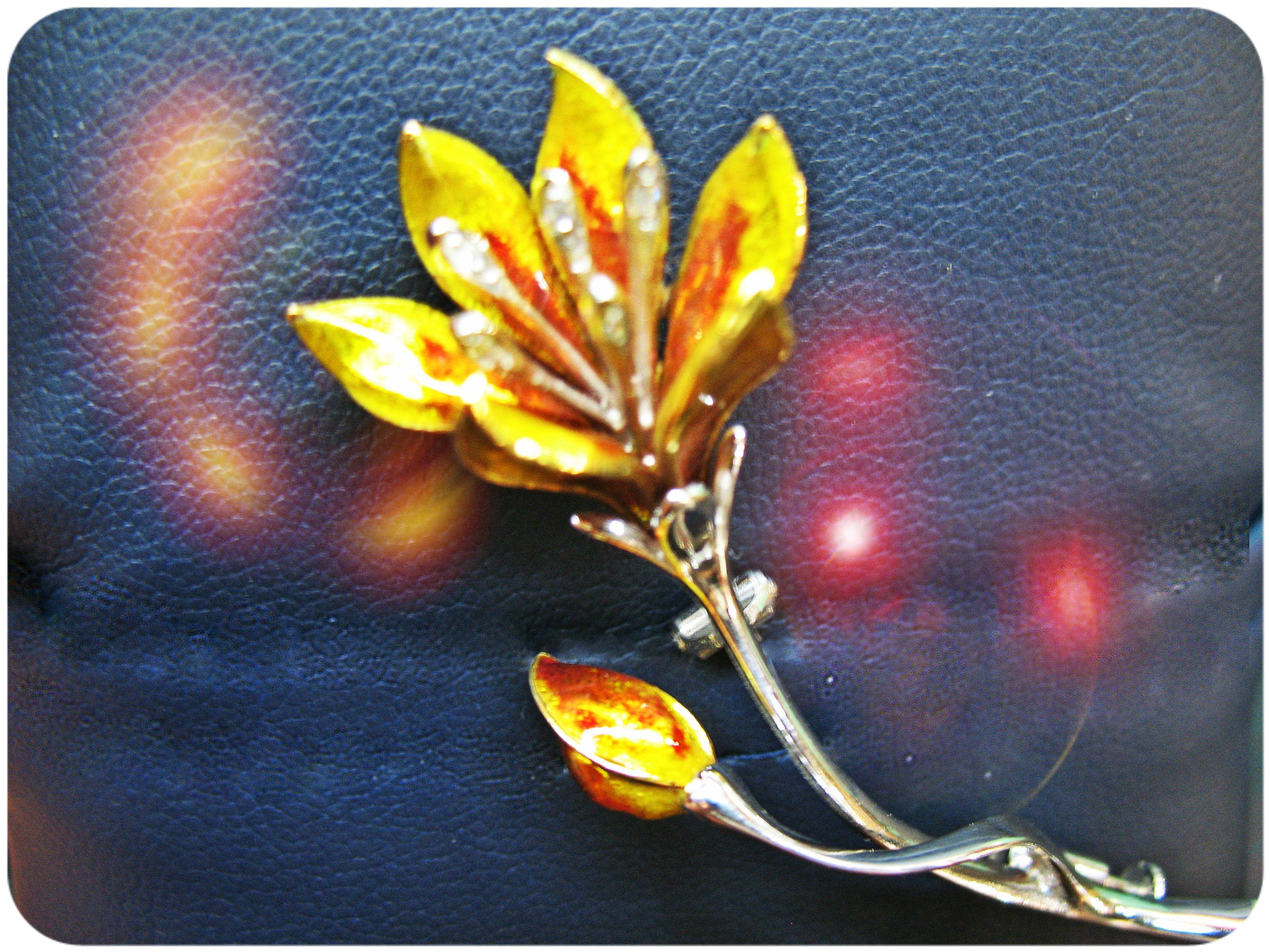Spilla in Oro bianco decorata con Smalto a Fuoco.
