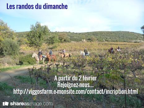 Les randos du dimanche / A partir du 2 février Rejoignez-nous.... http://viggosfarm.e-monsite.com/contact/incription.html
