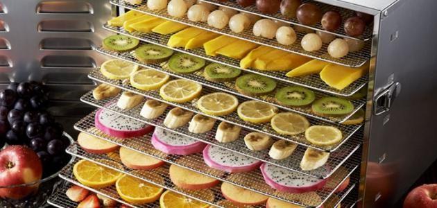 طريقة تجفيف الفواكه في المنزل Best Food Dehydrator Food Dehydrators Food