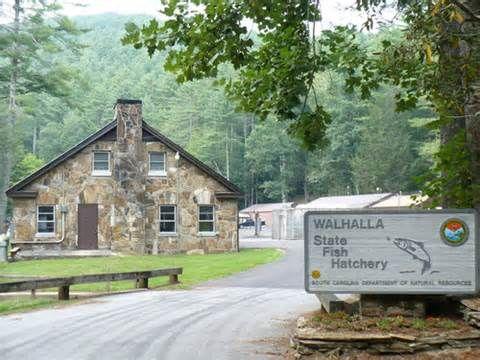 Wahalla Sc Yahoo Image Search Results South Carolina Fish Hatchery Beaufort County